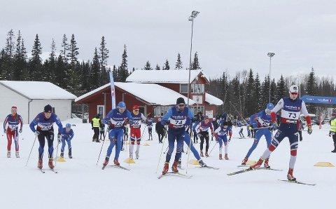FLOTTE FORHOLD: Det er flotte forhold på Sjåmoen, og hele løypenettet skal benyttes når langrennsløpere fra hele Nordland kommer på besøk.   Foto: Per Vikan