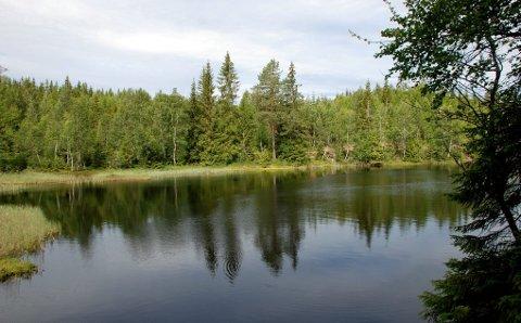 Fire sneiser: Sørsneisa får representere de fire Sneisene, som ligger på rekke og rad på grensen mellom Lier og Modum. Navnet kommer fra ordet «sneis», som betyr «pinne», «spiss nagle». Foto: Stein Styve