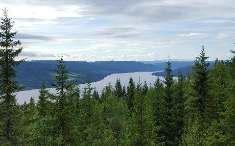 UTSIKT: Fra Granumsvarden er det fin utsikt nordover. (Privat)