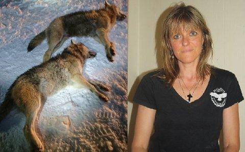 Ulvejakt: Leder i organisasjonen Rovviltets Røst Norge, Anne Margrethe Vadder, er fornøyd med at ulveflokken i Østfold og Mangen ikke skal skytes.