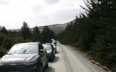 BETALING: Det har periodevis stått mange biler på veien opp til Bjørheimsheia. Nå kan eierne av veien trolig få ta betaling for parkeringen i området. Arkivfoto