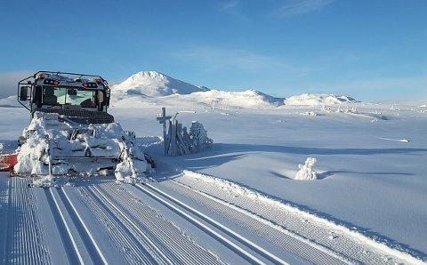 HØYFJELL: Oddvar Hagen kjører skiløypene for Tuddal løypelag i både høyfjell og litt lavereliggende terreng. Her har han ankommet det såkalte Sinsenkrysset.