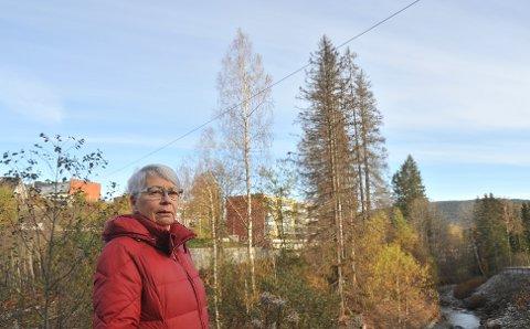 TØRRE TRÆR: Beboer Anne Toril Langøen lurer på hva som har skjedd med grantrærne som tidligere skjermet så fint mellom blokkene på Nygård (sees i bakgrunnen) og Svartkruttveien.