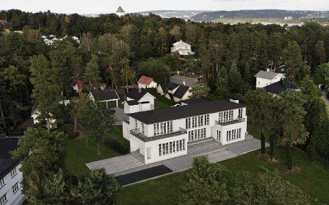STRANDPALASS: Else Helene Sundt søker om å få sette opp dette bygget på totalt 1000 kvadratmeter i strandsonen på Bygdøy. Ill.: LOGG arkitekter