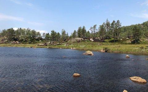 Ljosvatnet i Lund kommune