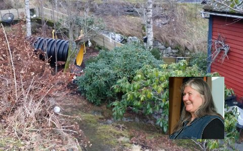 Inn i hagen:  Røyret landa om lag fem meter frå husveggen til Arnhild (innfelt) .
