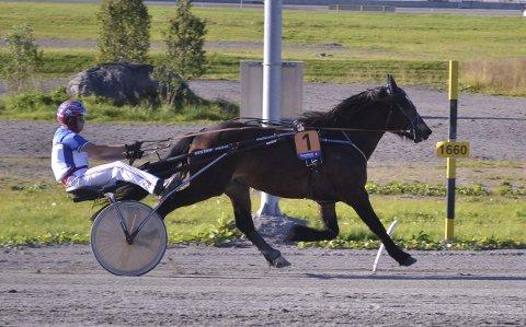 Klar for Travløp: Atom Vito, som eies av Dagfinn Martinsen, er klar for travløp.Foto: Privat