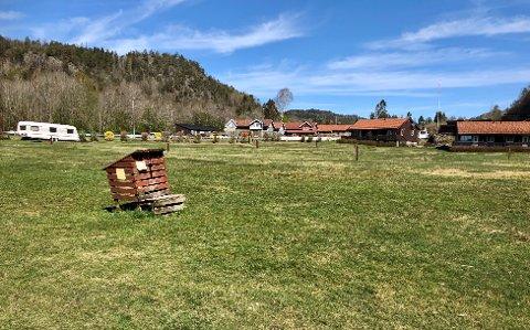 TOMT: Campingplassen på Olavsberget har plass til 50 bobiler og vogner. Inntil videre står gressplenen øde og får vokse i fred.