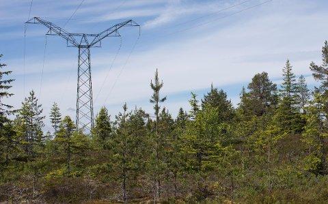 BLIR BORTE: Det er ikke lenger bruk for ledningen som går mellom Åsa i Ringerike til Smestad i Oslo.