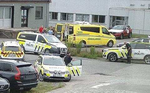 MÅTTE SKYTE OG BRUKE HUND: Politiet måtte ved ett tilfelle løsne et varselskudd og slippe en politihund da de skulle pågripe 45-åringen på Vallermyrene.