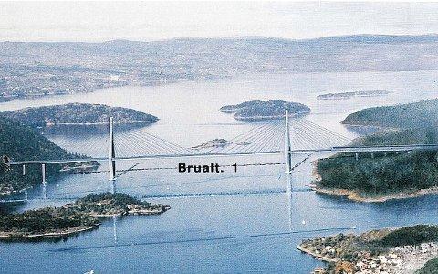Stor uenighet: Mens Nesodden er for bro, går Frogn mot. Hurum vil ha bro, det samme vil Buskerud fylke. Akershus fylke avgjør saken kommende mandag.