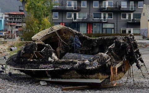 Miroslaw Okopniuk bor like ved Damsgårdssundet og så denne båten fra balkongen sin. Dekket med skjell, tang og til og med en ål. Ligger på Laksevågsiden.