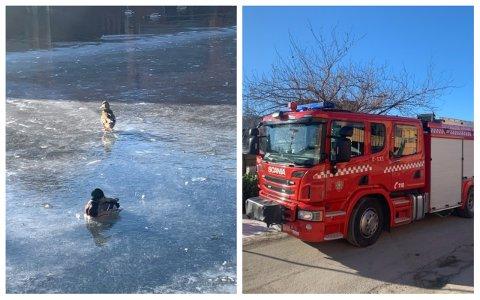 SAT FAST: Anda sat fast i isen, men kom seg laus då brannvesenet kom.
