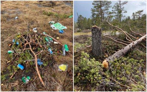 KJEDELIG SYN: Flere turgåere reagerer på forsøpling ved Tverråsutsikten. Det ser også ut til at det har blitt hogget ned et tre.
