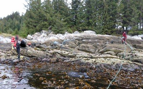 REDNINGSAKSJON: Båten kvinna og mannen var om bord i køyrde på land på øya Selja 19. mai i fjor.