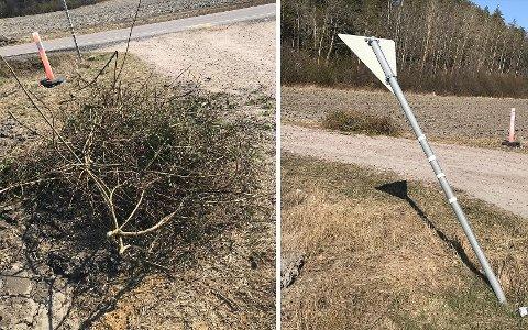 Mandag formiddag oppdaget Ann-Mari Raakil at noen hadde dumpet hageavfall på innkjøringen til huset deres. Samtidig hadde et vikepliktskilt blitt meid ned.