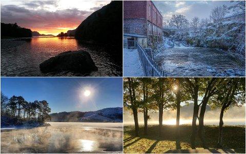 Disse bildene er alle med i konkurransen om å få henge på Amfi Ålgård. Se flere bilder lenger ned i saken.