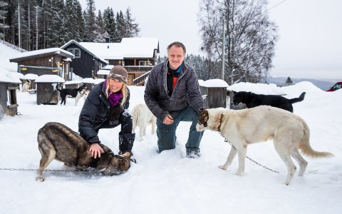 Ida Nilseng og Leif Tore Lie, som står bak Sjusjøen Husky Tours, går en usikker fremtid i møte når de nå mister inntektsgrunnlaget i sine to viktigste måneder.