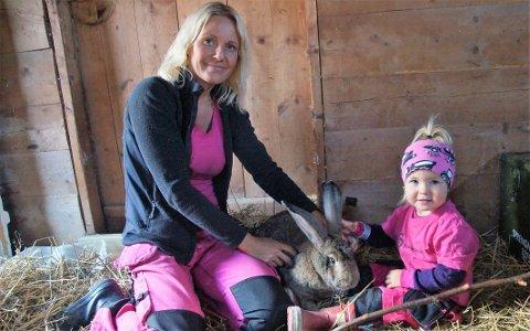 STARTET MED KANINER: Det hele startet med tre kaniner. Nå har Anne Marte og veslebonden Lotte flere dyr enn de kan telle.