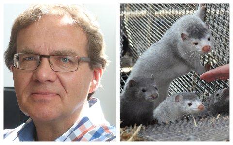 INNSPEL: Landbruksdirektør Geir Skadberg hos Fylkesmannen i Rogaland har fleire innspel til forbetringar i Landbruks- og matdepartementets forslag til erstatningsordning for peldsdyrbønder som må avvikla når pelsdyrhald blir forbode i 2025.