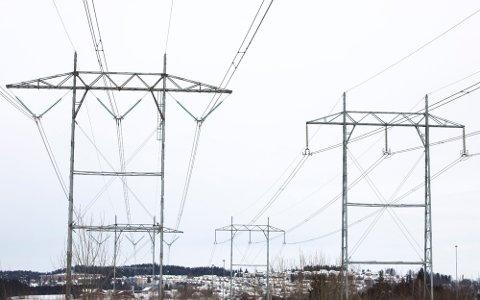 PRISFALL: Strømprisene falt nesten 10 prosent i mars. Foto: Ole Berg-rusten (NTB)