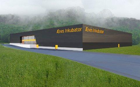 Ænes Inkubator, skisse