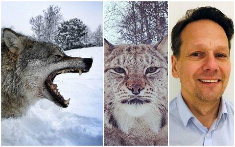 Jens-Kristian Dybwad er daglig leder i Polar Park Arctic Wildlife Centre i Bardu.