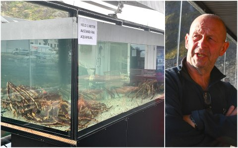 Ronny Østrem, daglig leder hos Live Lofoten i Stamsund, er kry av det nye akvariet som er plassert i uterestauranten på Skjærbrygga.