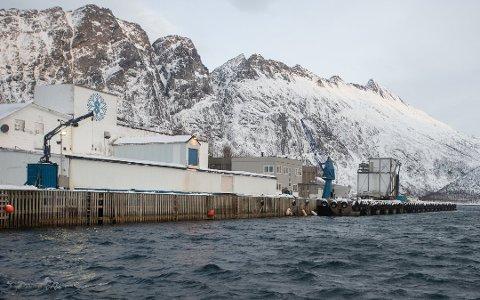 SOLGT: Fiskebruket i Torsken har endelig fått nye eiere etter en lengre salgsprosess.