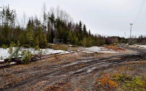 Det er her, ved RAs gamle lastespor, det ønskes etablert en tømmerterminal for årlig omlasting av 75.000 kubikkmeter massevirke fra bil til tog.