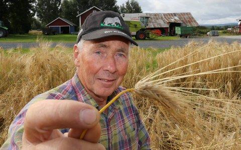 BRA: – Det ser bra ut her i øyeblikket. Men skuronna er nok minst 12- til 13 dager forsinket, sier bonde Ole Andreas Trongaard i Åsnes.