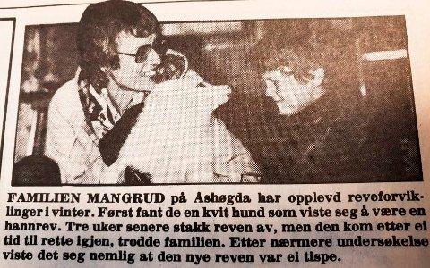 1983: Bilde av deler av saken i Ringsaker Blad 10. mars 1983. Bildet viser Lilly Mangrud, reven og den ene sønnen.