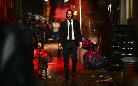 NY HUND: John Wick har skaffet seg ny hund, men nå er det John Wick selv som blir jaktet på av leiemordere.