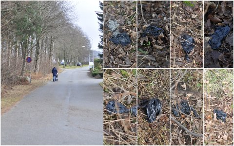 Langs denne veien på Varatun ligger det en haug med hundebæsjposer i grøfta.