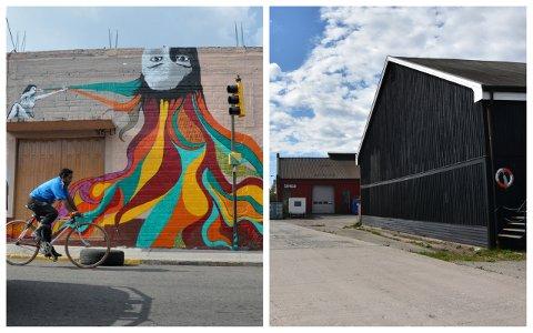 I Mexico har Rita Rohdin Nyhuus stått bak dette kunstverket. I Svelvik kommer kunstverkene til å ha et mer maritimt uttrykk.