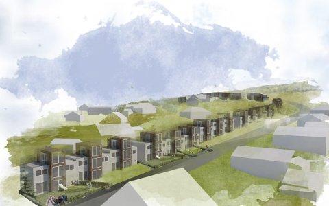 TRENGER NAVN TIL NYTT BOLIGOMRÅDE: Dette er en foreløpig skisse for det planlagte boligprosjektet i området Stomperud/Grønlia. Det vil bestå av inntil 33 rekkehus, med mulighet for 25 boliger i den nordre delen i tillegg.