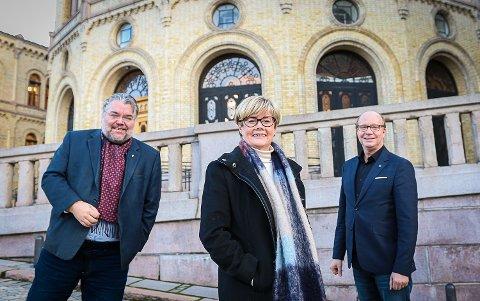 VANT FRAM: Stortingsrepresentantene (f.v.) Morten Wold (Frp), Kristin Ørmen Johnsen (H) og Ketil Kjenseth (V) har kjempet gjennom 1,2 millioner i prosjektmidler til Trillemarka Rollagsfjell Naturreservat.