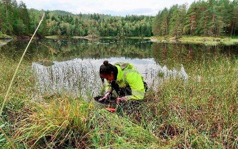 REGISTRERING: Kristina Skarsjø var blant dem som deltok under den arkeologiske registreringen i E18-korridoren. Her er hun fotografert ved Bakkevann.