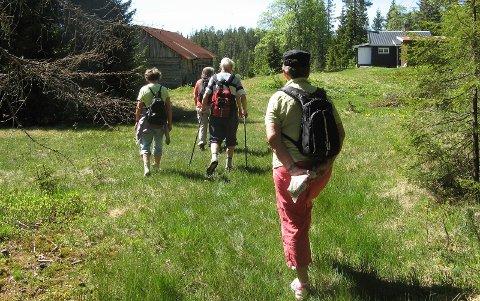 På tur fra Haugpass til Gunnbøhaugen