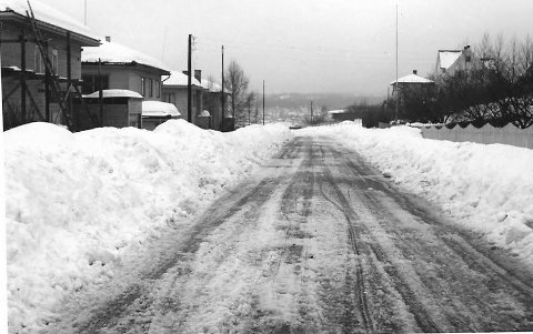Fjordveien 195: Brøytekantene ble brukt når vi skulle ta oss fram på ski. Det var først da vi kom til Nesparken at løypene flata seg ut. alle foto: johan rynnås