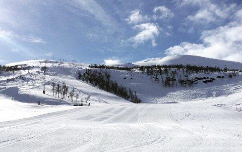 Den siste uka har det gått flere skred på Filefjell. På Østlandet har NVE utstedt varsel om moderat til betydelig snøskredfare.