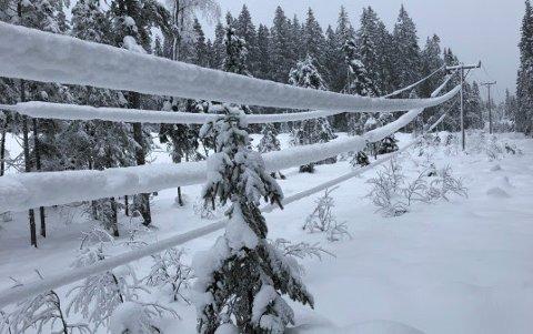 KAN RYKE: Den tunge snøen kan skape problemer for strømforsyningene på Romerike. Denne lavthengende kraftlinjen er i Nittedal.