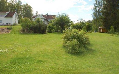 VIL BYGGE: Bildet viser nederst på tomten sett opp mot eksisterende anneks, enebolig og eplehage.