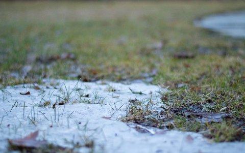 Det er lurt å begynne vårstellet så snart snøen har forsvunnet.