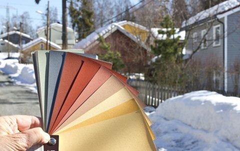 Se fargene mot nabohusene og den gråhvite snøen før du velger.