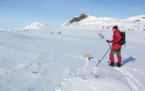 Herleg føre og forhold: Mot Djuptjernkampen (t.v.) og Solskiva, eit flott turområde både vinter og sommar.
