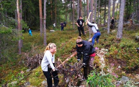 Dugnad: Det ble ryddet i busk og kratt for å stelle i stand den nye discgolfbanen utenfor Valdres storhall.