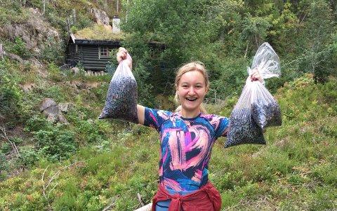 GULLÅHENTE:Martine Enoksen Lamo (15) med utbyttet fra en par timers lang blåbærtur mandag.