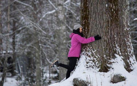 Sissel M. Rasmussen mener eika ved To gård er som skapt for dem som liker å klemme trær. Det finnes faktisk en egen forening for de som elsker å klemme trær - Norsk Treklemmerklubb. Eika ved To gård kan anbefales.