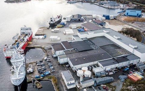 TRAVLE TIDER I VENTE: Nordsjøsildsesongen startar i midten av mai. Frå då og til starten av juli blir det svært hektisk produksjonsaktivitet ved anlegget til Pelagia Egersund Seafood.